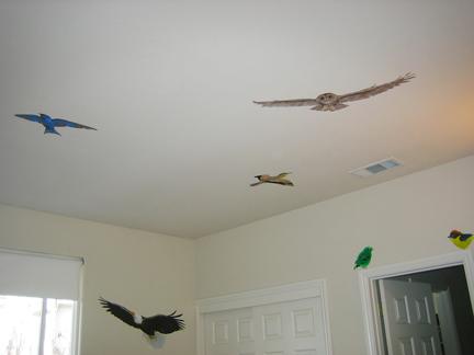 Taking Flight in 2011 (3/6)