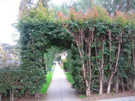 Hedge Funz (3/6)