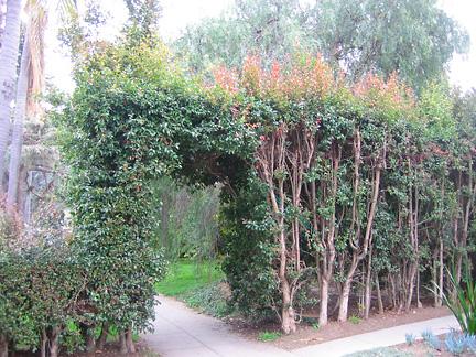 Hedge Funz (4/6)