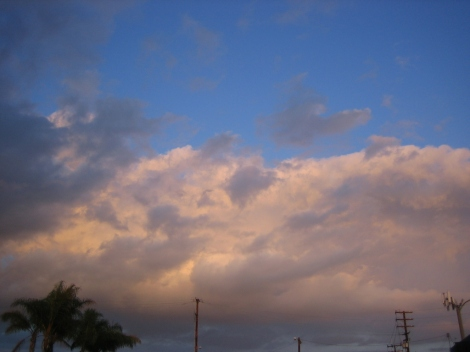 Feb112012_7104