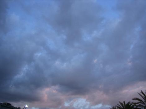 Feb112012_7108