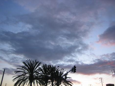 Feb112012_7110